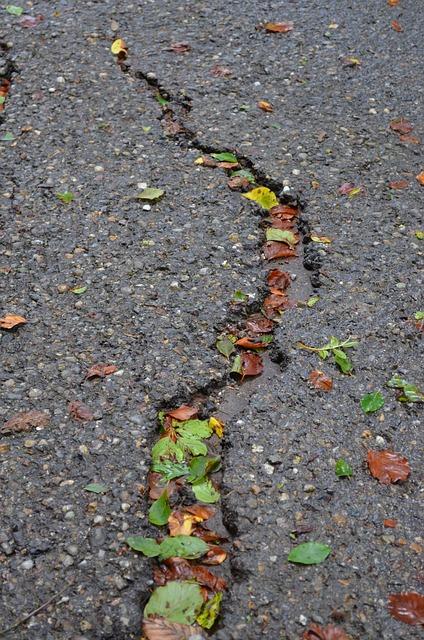 Asphalt Driveway Crack